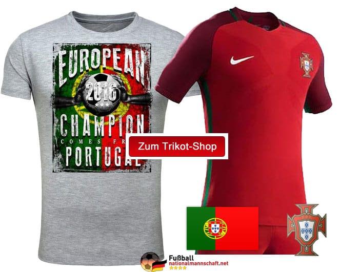 em-portugal-europameister20